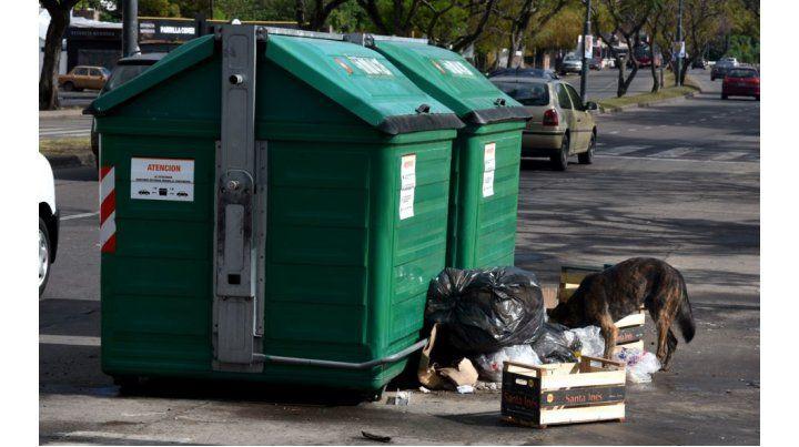 La Municipalidad le pide colaboración a los vecinos para mantener la higiene urbana. (Foto: C. Mutti Lovera)