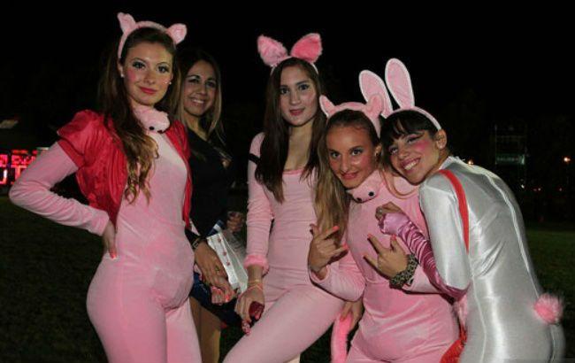 La edición 2015 de la Fiesta de Disfraces de Paraná se suspendió para el  próximo 22 4da6c534156