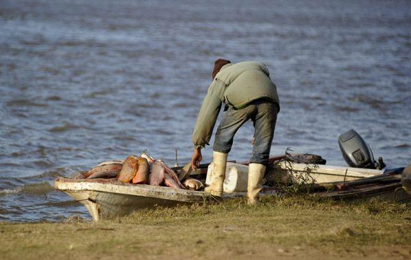 Villarreal afirmó que según los funcionarios provinciales la veda se levanta porque hay montones de peces en el río.