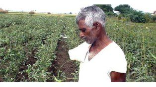 Las deudas terminan en el suicidio de miles de agricultores indios