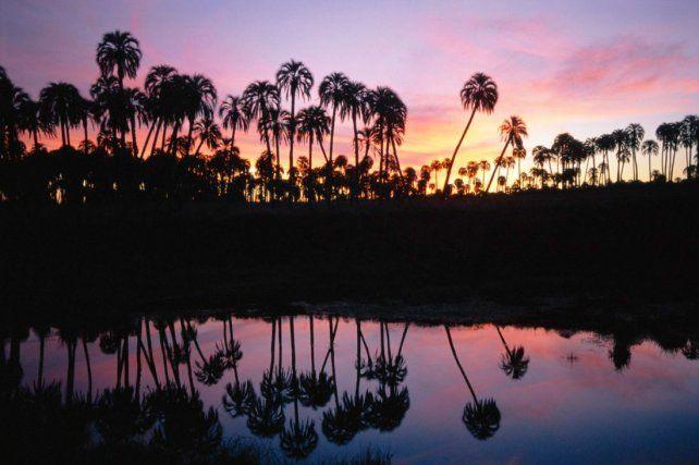 Las islas e islotes del Delta ofrecen la posibilidad de tener un encuentro con la naturaleza.