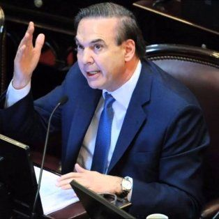 El jefe de la bancada del Frente para la Victoria en el Senado, Miguel Pichetto.