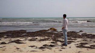 Fatídica travesía. Cientos de cuerpos arrastrados por el mar aparecieron el jueves en una playa libia.