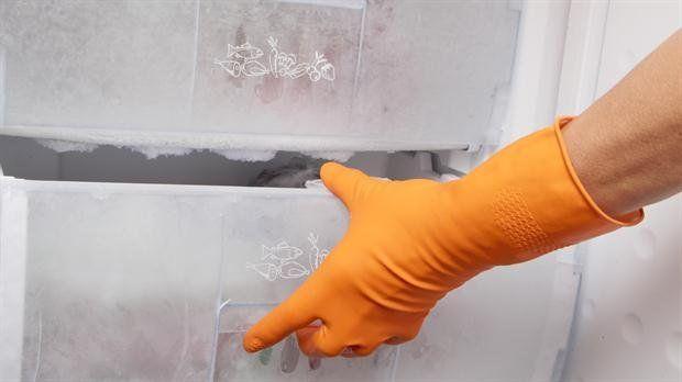 Una mujer compró un freezer sin saber que en su interior estaba el cuerpo sin vida de su vecina.