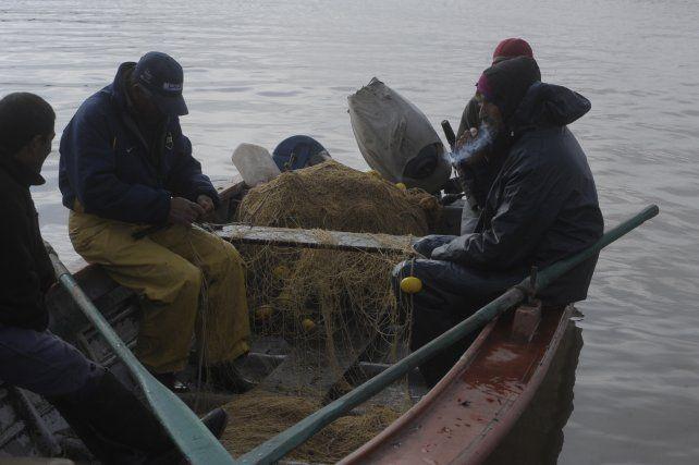 Cuidar la fauna. Santa Fe tiene regulada la pesca comercial y fija tasas de captura