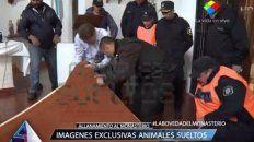 encontraron tres bovedas en el altar del monasterio donde fue detenido lopez con los millones