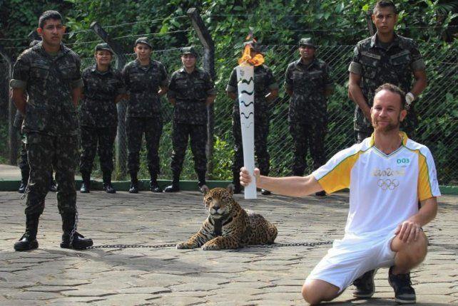 Antes del incidente. El jaguar Juma en el paso de la antorcha olímpica por Manaos.