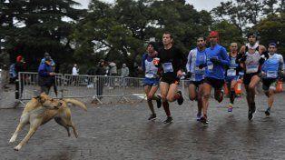Unos 5 mil corredores participaron del maratón.