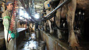 Leche. La caída de los tambos arrastró finalmente a la industria láctea.