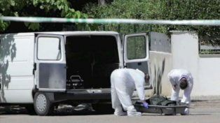 Los servicios municipales recogieron el cadáver del animal.