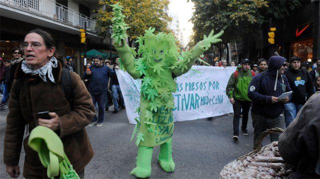 Especialistas disertarán este sábado en Rosario sobre las facultades medicinales de la marihuana. (Foto:Alfredo Celoria).