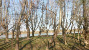 Belleza. El Legado Deliot abarca unas 1.700 hectáreas sobre el humedal del Alto Delta del Paraná.