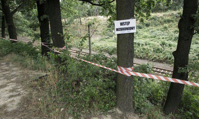 Una leyenda local asegura que un tren nazi cargado de oro desapareció en un túnel de las montañas cuando los alemanes huían en la Segunda Guerra Mundial.