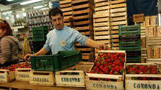 La producción de la zona de Coronda se ve muy afectada por las importaciones.