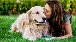 Las mascotas suelen ser más fieles que muchos humanos.