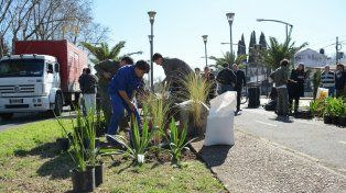 ecológicos. Operarios recorrieron las avenidas y colocaron plantas.
