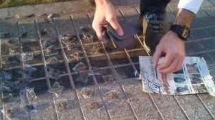 Desde la Policía indicaron que con lo incautado habrían podido armar 160 porros y 40 dosis de cocaína.