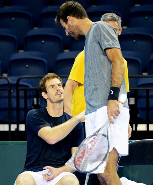 Cracks. Andy Murray y Delpo