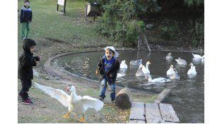 La Granja de la Infancia es uno de los espacios que integra el Tríptico. Desde el lunes se dan turnos para recorridos grupales.