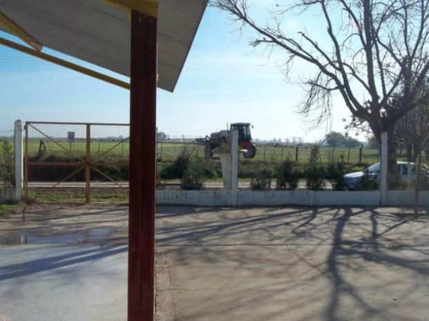 Foto de archivo sobre fumigaciones en terrenos vecinos a una escuela.