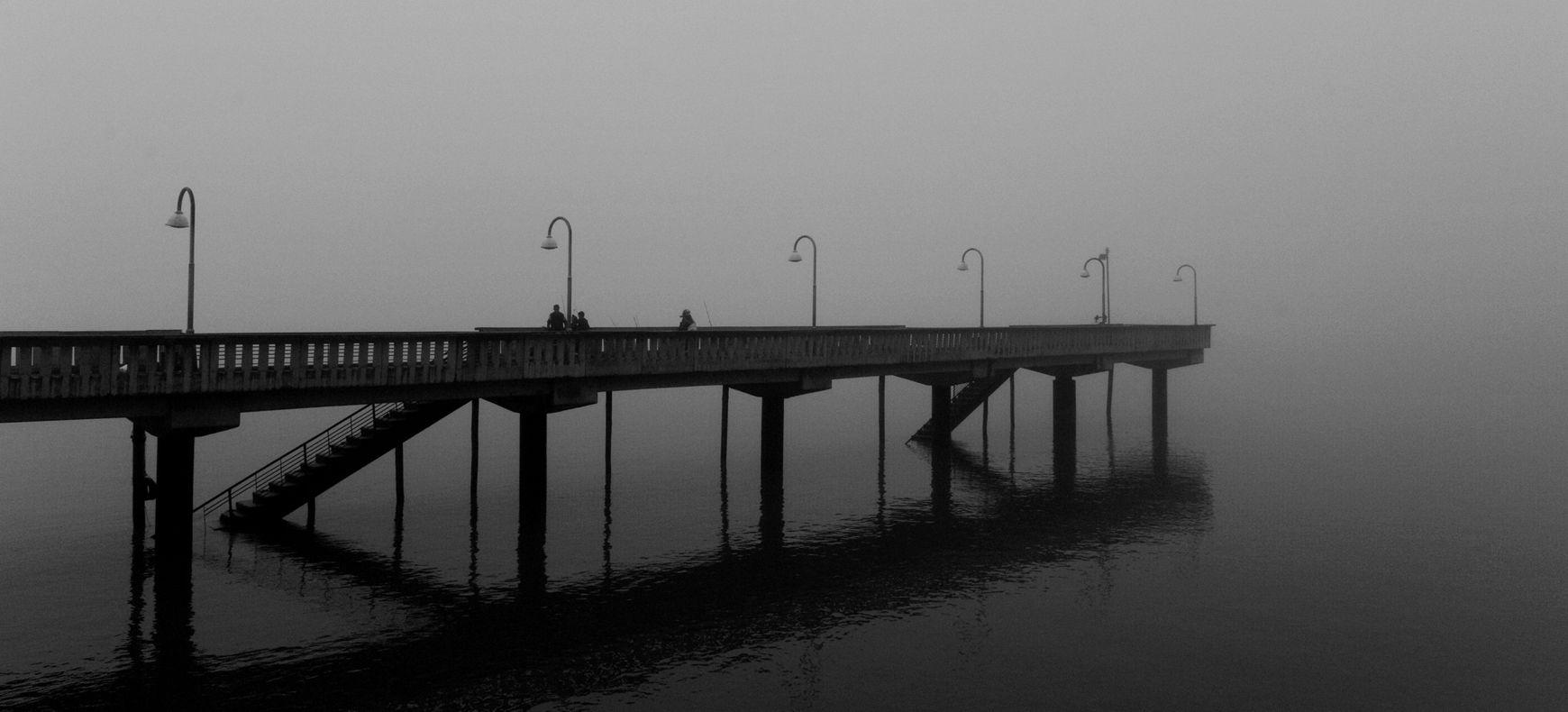 El reino de la niebla