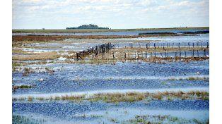 Excesos. Las intensas lluvias afectaron la producción en el sur de Santa Fe en el ciclo 2013/14.