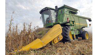 No levanta. Campos anegados y caminos cortados dificultan la trilla del maiz.
