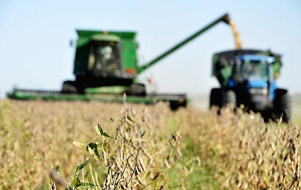 El rinde promedio nacional de soja se ajustó a la suba y se fijó en 28.3 quintales.