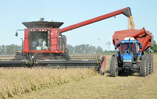 Tendencia. Para muchos productores santafesinos la campaña sojera no fue muy buena y por eso buscan sumar productividad con el trigo.