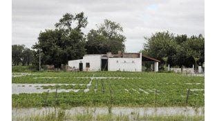 Anegamientos. Las tormentas en la región afectaron al sector agropecuario.