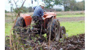 Campos con vida.  La producción agropecuaria a través de unidades familiares forma parte de un entramado social y económico que los Estados deben proteger.