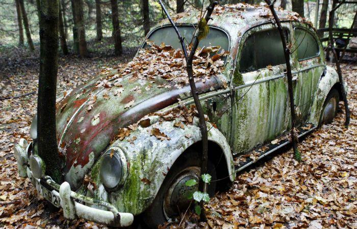 Reliquia. Un VW Escarabajo