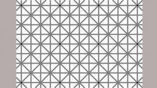 La enigmática cuadrícula donde hay que poder observar todos los puntos negros.