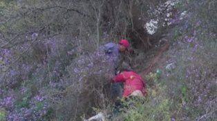 El hombre resistió varios minutos colgado de algunos arbustos y ramas en la barranca.