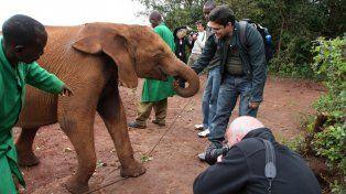 Elefantes. El orfanato alberga a unas 30 crías.