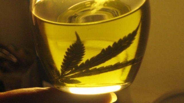 Presentan un proyecto para autorizar el uso medicinal del aceite de Cannabis en la provincia