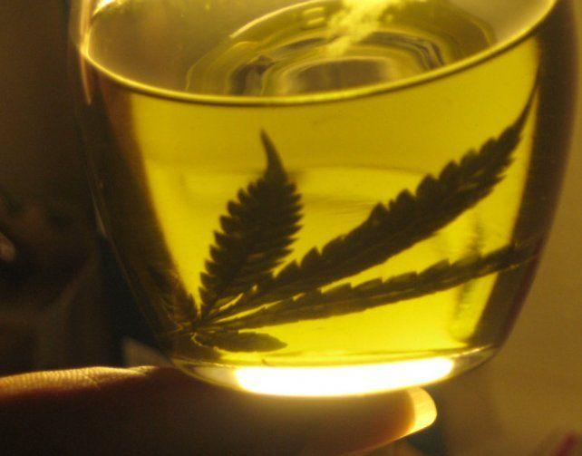 el producto. Anmat autoriza el ingreso del aceite de cannabis del exterior