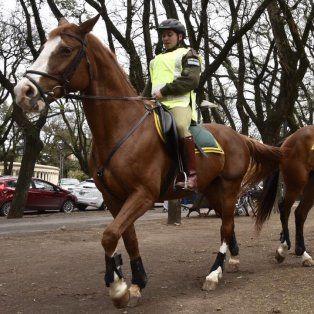 Los gendarmes comenzaron a recorrer las calles rosarinas en horas de la mañana de hoy.