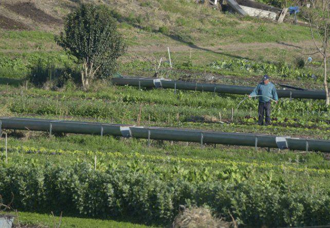 más tierras. En la ciudad aún quedan 800 hectáreas de suelo productivo.