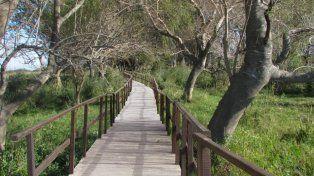 Lo que viene. Así serán las pasarelas que el municipio instalará en la zona de islas.