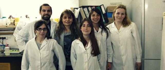 Hay equipo. Los investigadores de la Facultad de Bioquímica estudiaron los efectos sobre mamíferos expuestos al agroquímico.
