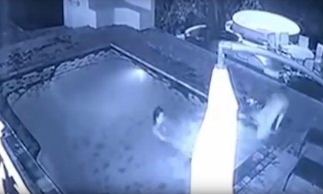 Una pareja fue atacada por un cocodrilo cuando disfrutaba de un momento romántico en la pileta
