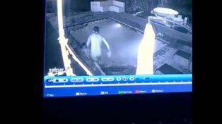 Un novio se asustó y dejó a su chica sola frente a un cocodrilo que se lanzó de imprevisto a la pileta
