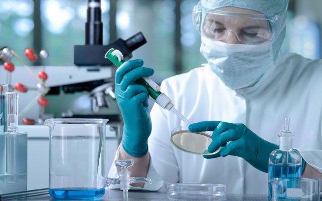 In vitro. Argentina es un país que se destaca a nivel mundial por los tratamientos de fertilización asistida.