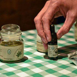 Aprobado. El uso del aceite de cannabis fue analizado por especialistas.