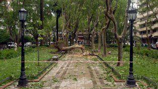 La pedrada del 15 de noviembre de 2006 dejó heridas en la sociedad rosarina que aún no cicatrizaron.