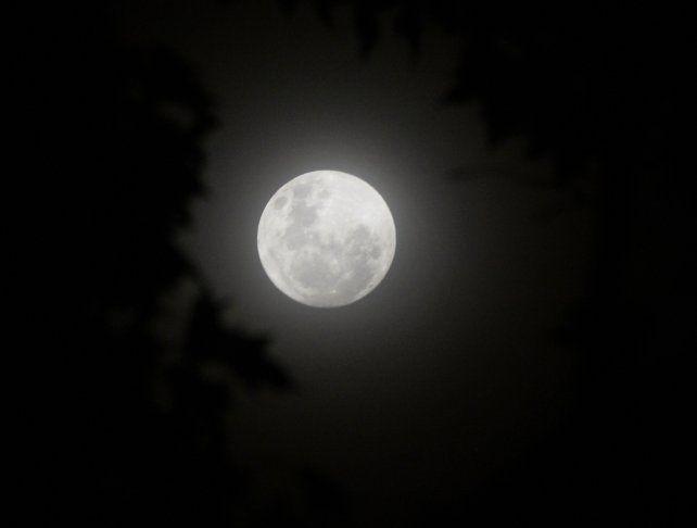 La superluna se asoma entre los árboles de la plaza 25 de Mayo.
