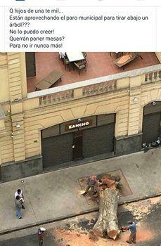 desde arriba. Los vecinos fueron testigos directos de la acción que se cometió frente a un restaurante.