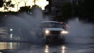 Diez árboles caídos y 40 milímetros en una hora, el saldo de la tormenta en Rosario