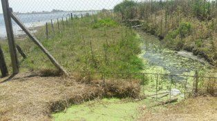 Sin control. La vieja planta desecha todo en la laguna.
